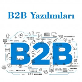 B2B Web Yazılımları
